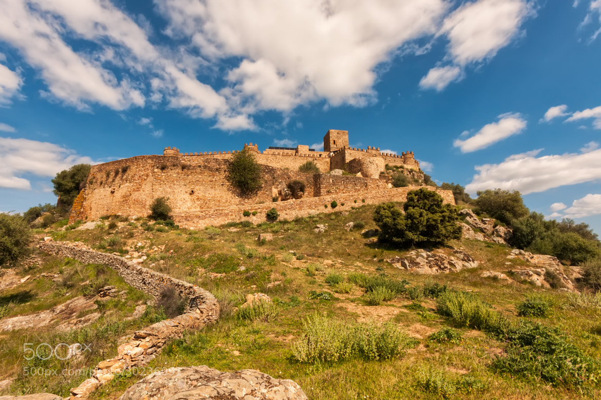 Photograph The Castle by Jorge Orfão on 500px