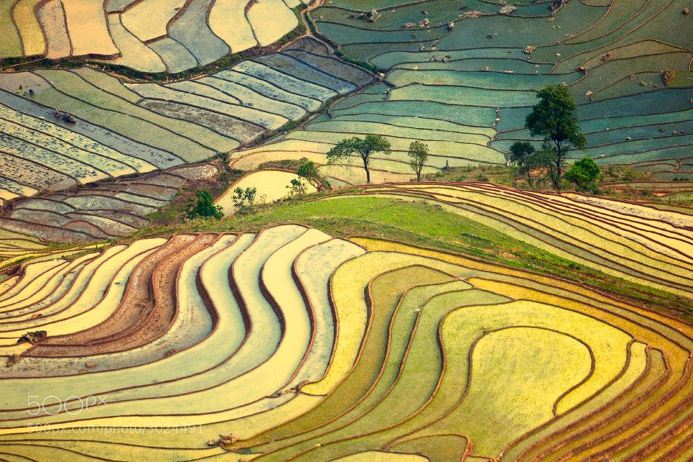 Photograph Yti - pour water season by Hai Thinh on 500px