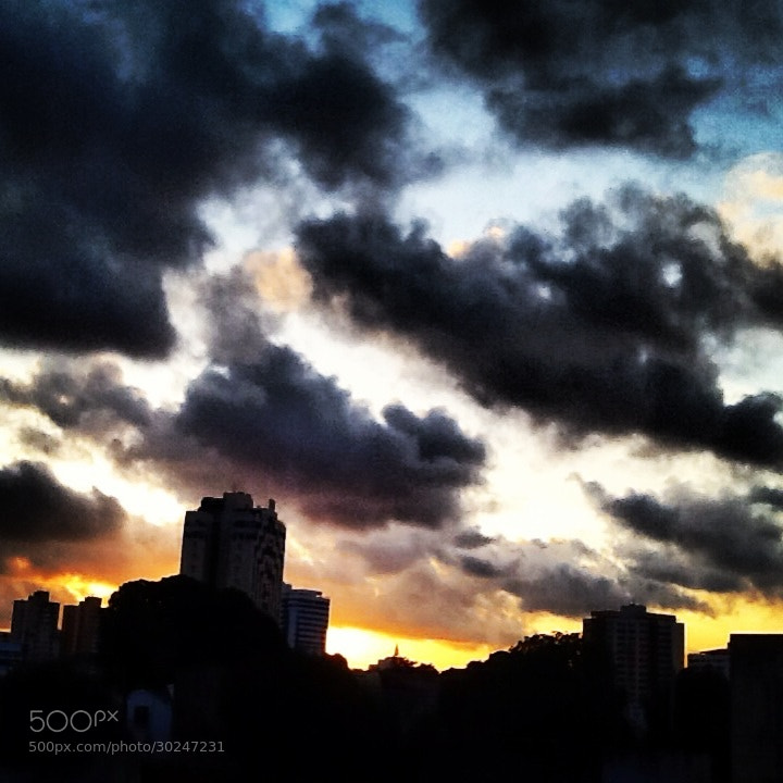 Photograph Untitled by Sophia Araujo on 500px