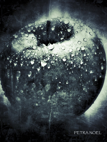 Photograph Apple by Petra Noel on 500px