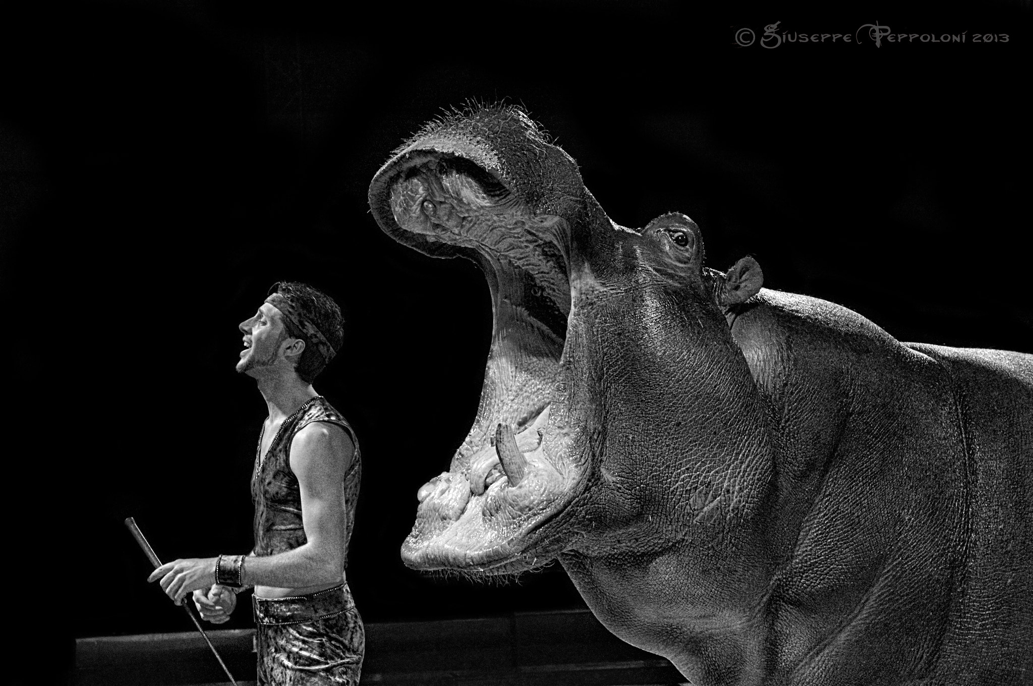 Photograph At the circus by Giuseppe  Peppoloni on 500px