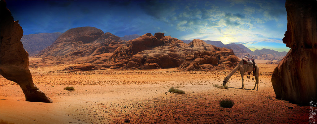 Photograph Wadi Rum by Pavel Baranovskyy on 500px