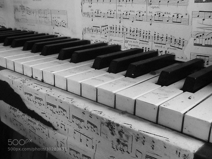 Photograph Piano. by Leonor Nobre on 500px