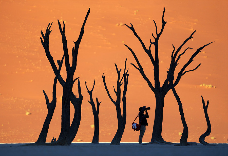 Camel Thorn , Deadvlei by Sarawut Intarob on 500px.com