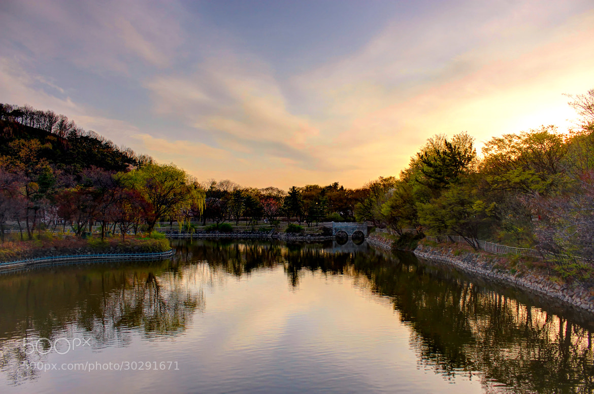Photograph Sunset in the park by Chris Anderson on 500px