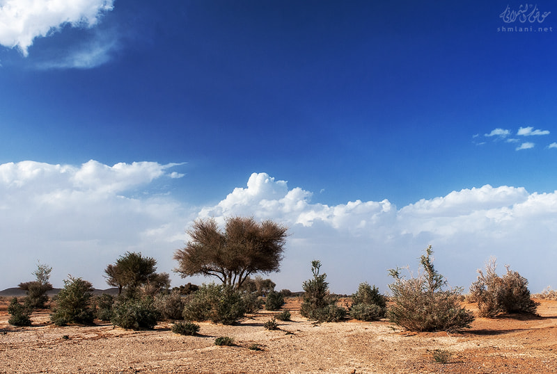 Photograph Simple landscape by Awadh alshmlani on 500px