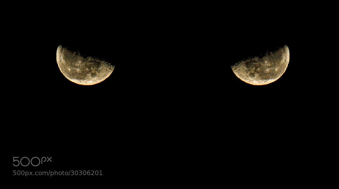 Photograph Angry mOOn )) by No Smoking on 500px