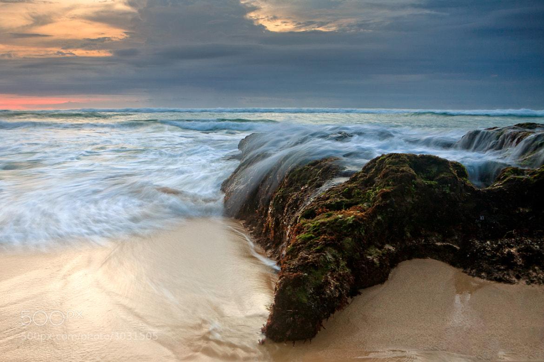Photograph Paradise Land by Helminadia Ranford on 500px