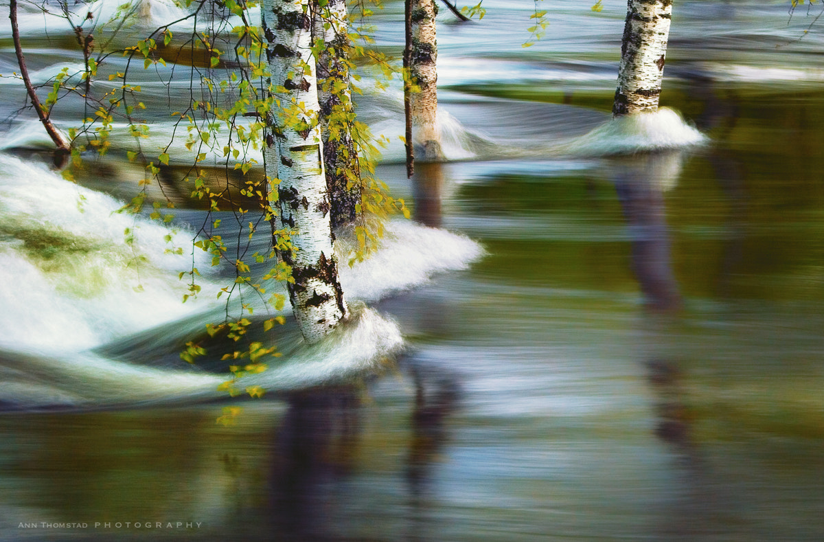 Photograph Spring Flood by Ann Thomstad on 500px