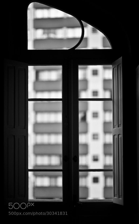 Photograph Untitled by Nayara Gonçalves on 500px