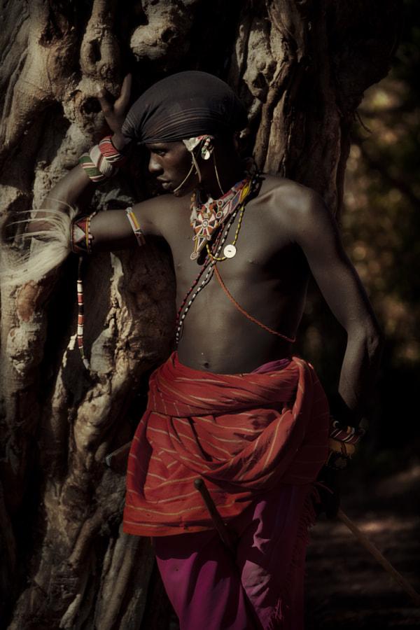 Samburu tree