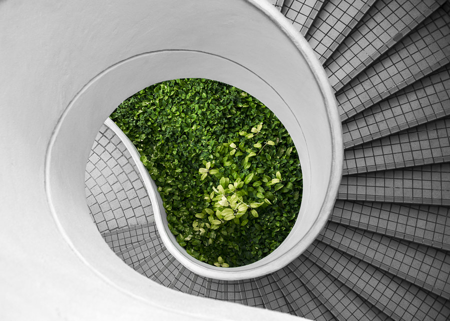 Hidden Stairs #5 by Philippe Put on 500px.com