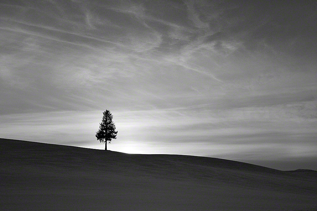 Photograph Shortly After Sunset by Kent Shiraishi on 500px