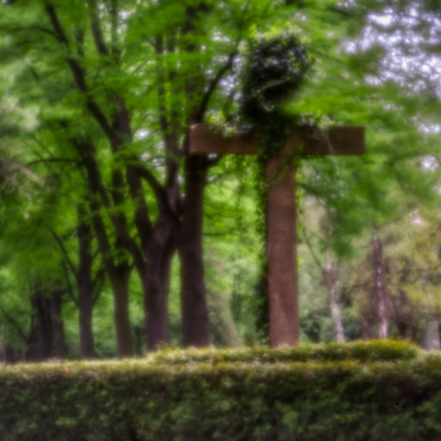cross by dirk derbaum on 500px.com