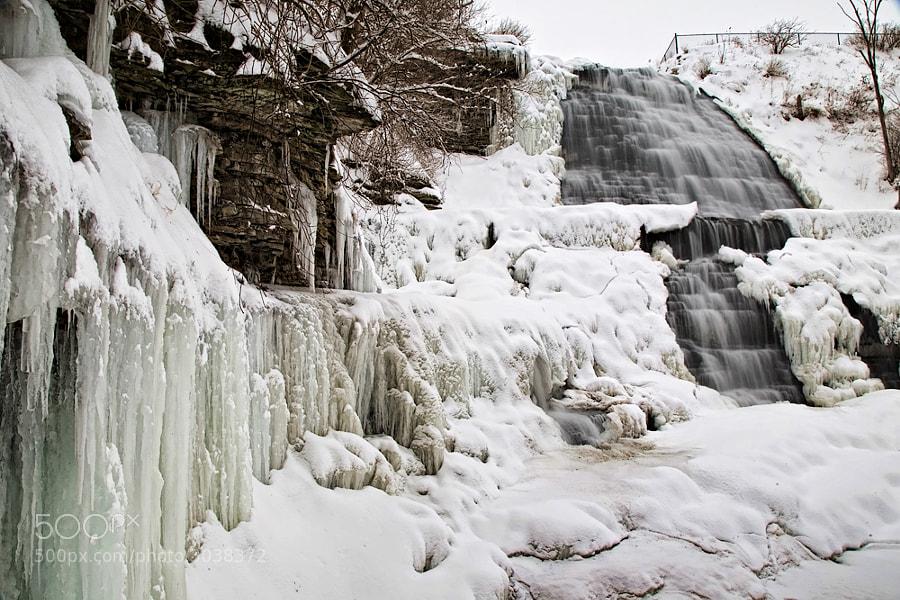 Taken in January 2009 in Hamilton, Ontario