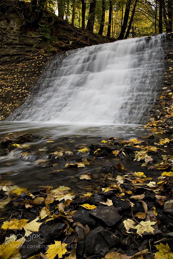Taken in October 2009, in Ancaster, Ontario