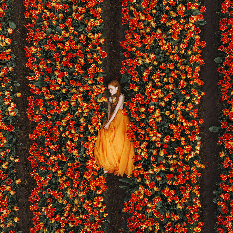 Orange Dream by Jovana Rikalo on 500px.com