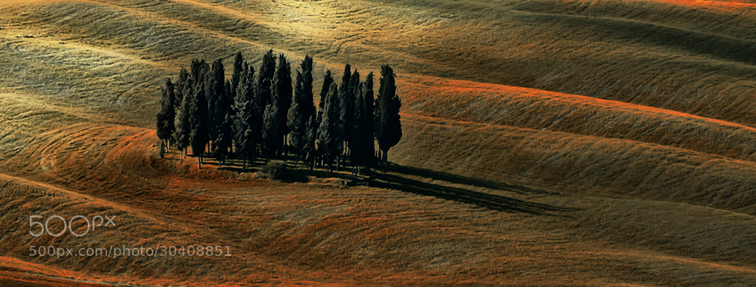 Photograph Untitled by Roberto Paglianti on 500px