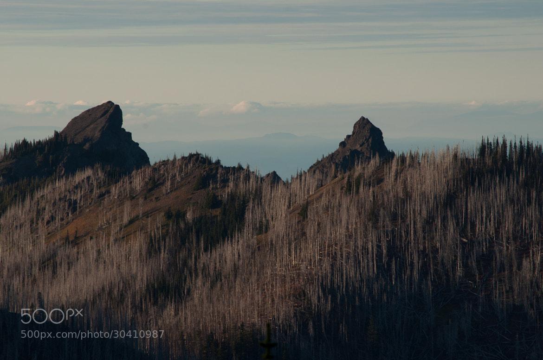 Photograph Hurricane Ridge by Mateusz Wykurz on 500px
