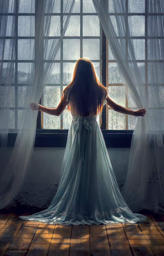 Looking Out by Jessica Drossin - a No.1from shop.vanechow.com