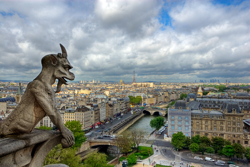 Photograph Paris - view from Notre Dame by Dieter Schaefer on 500px