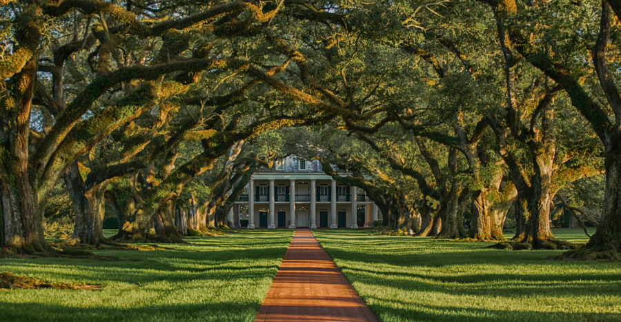 Oak Alley Plantation by Jens Bernard on 500px.com