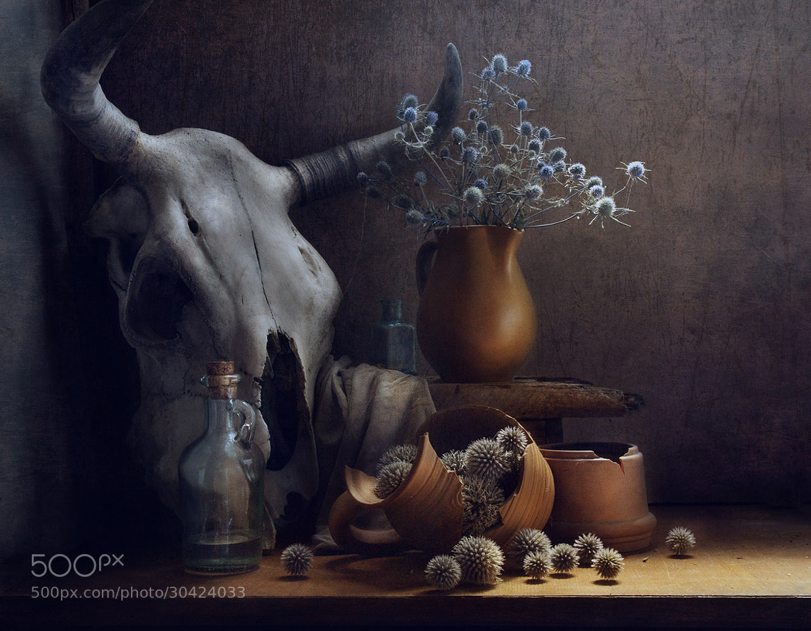 Photograph Memento mori by Anatoly Che on 500px
