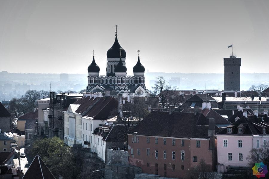 Tallinn by Fabrizio Fumagalli on 500px.com