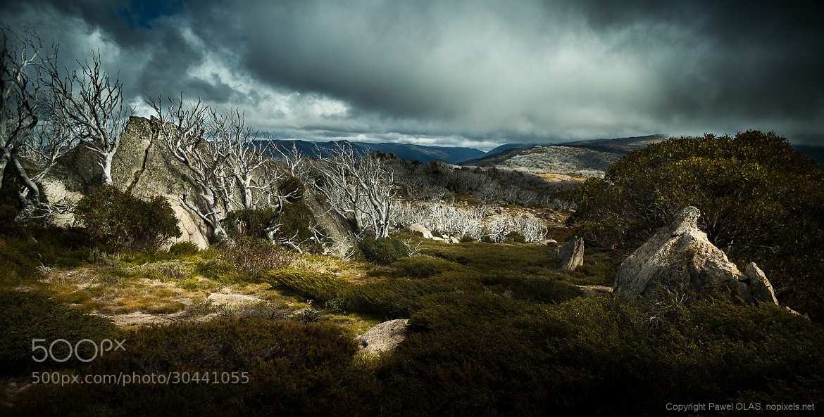 Photograph snowy mountains by Pawel Olas on 500px