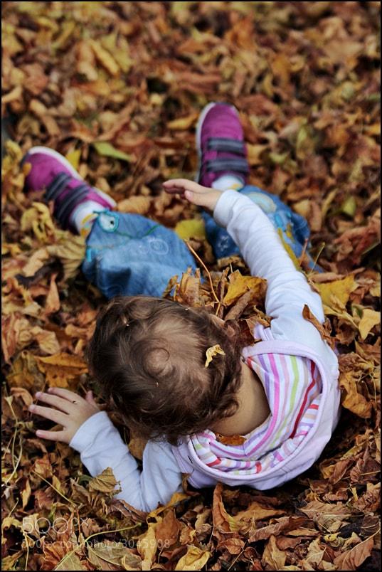 Photograph Autumn is beautiful by Özcan Çeltikli on 500px