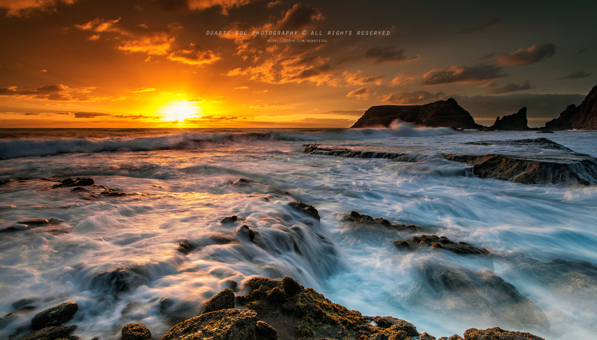 Photograph Lost World by Duarte Sol on 500px