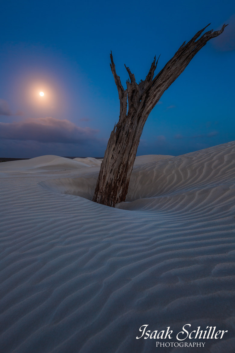 Photograph Full Moon Light by Isaak Schiller on 500px