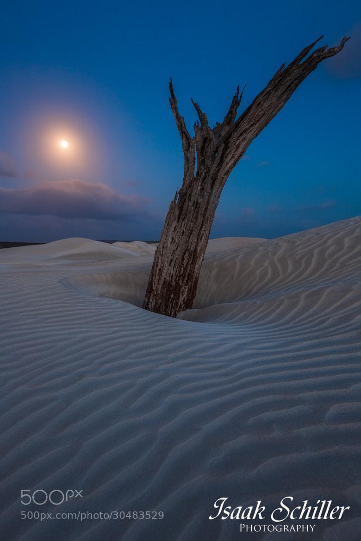 Photograph Full Moon Light by Isaak  Schiller on 500px