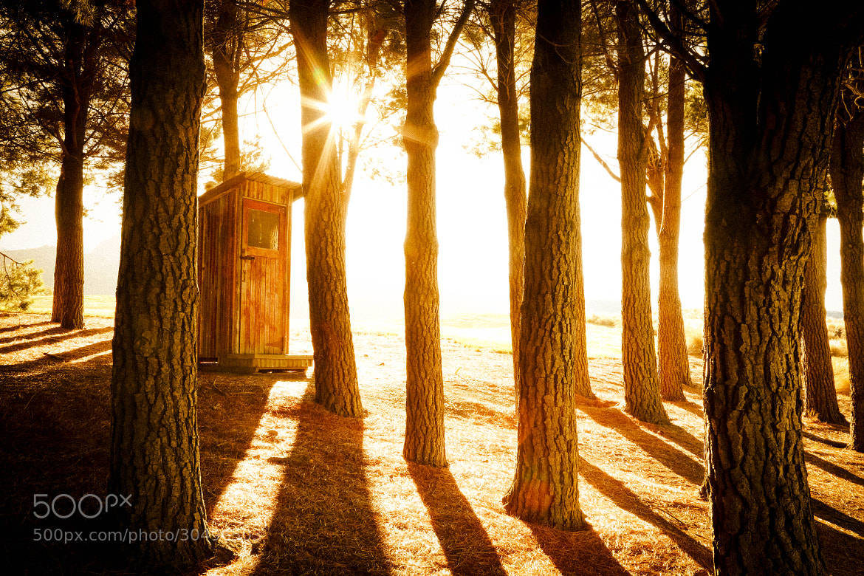 Photograph Morning Light by Richard Schneider on 500px