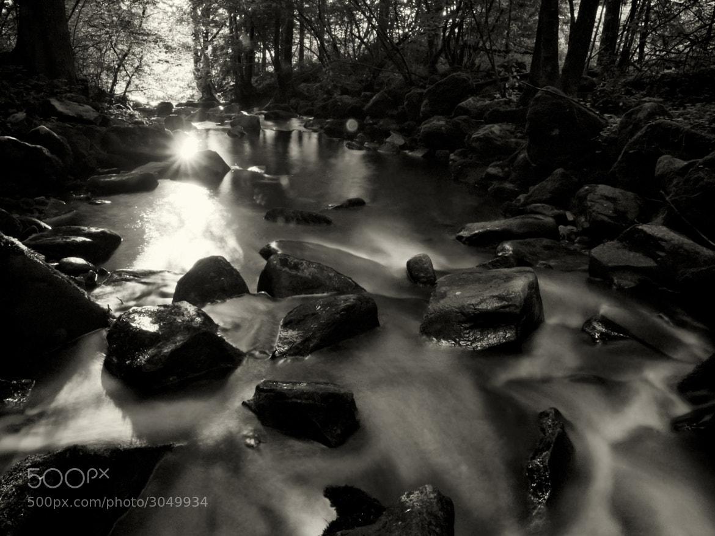 Photograph last light  by Franz Bogner on 500px