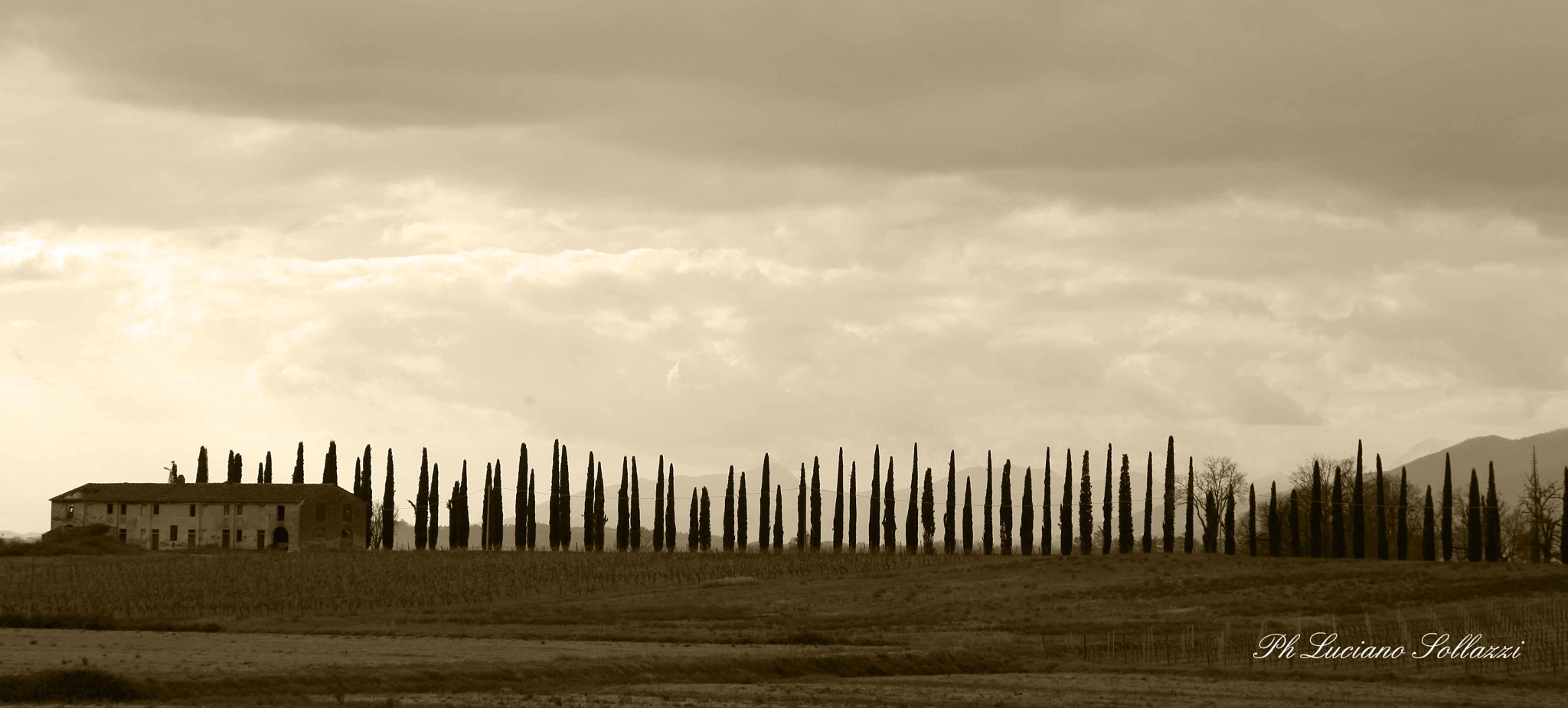 Photograph Tuscany by Luciano Sollazzi on 500px