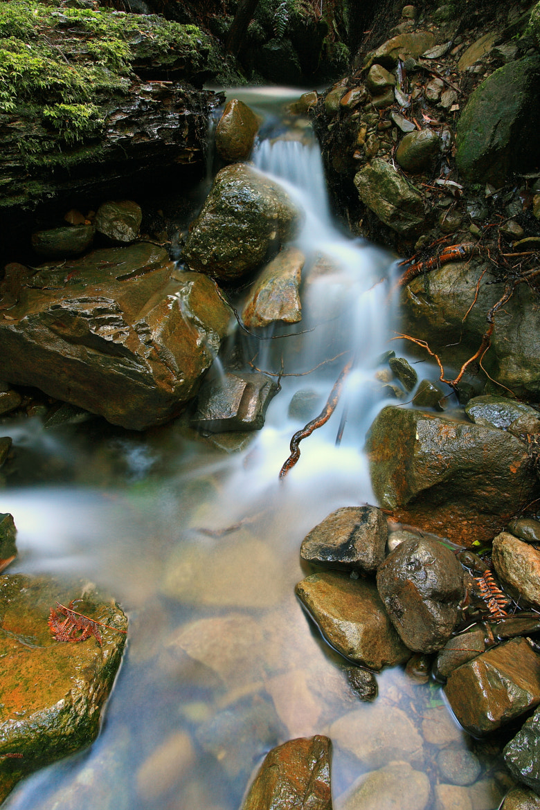 """Photograph """"Little Trickle"""" by Dale Mawby (Husky Photography) on 500px"""
