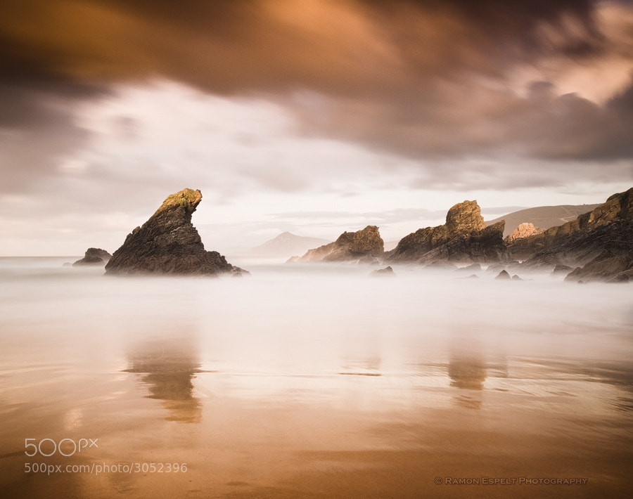 Photograph Copper Beach by Ramón  Espelt on 500px