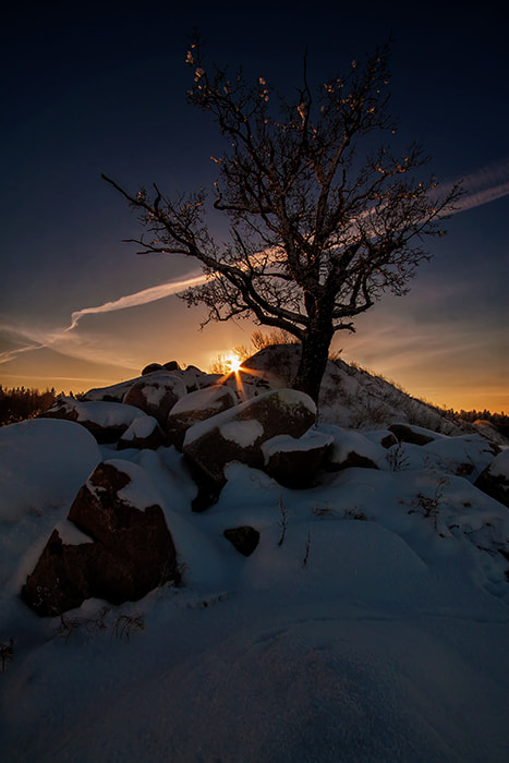 Photograph winter sunset by Dgs  on 500px