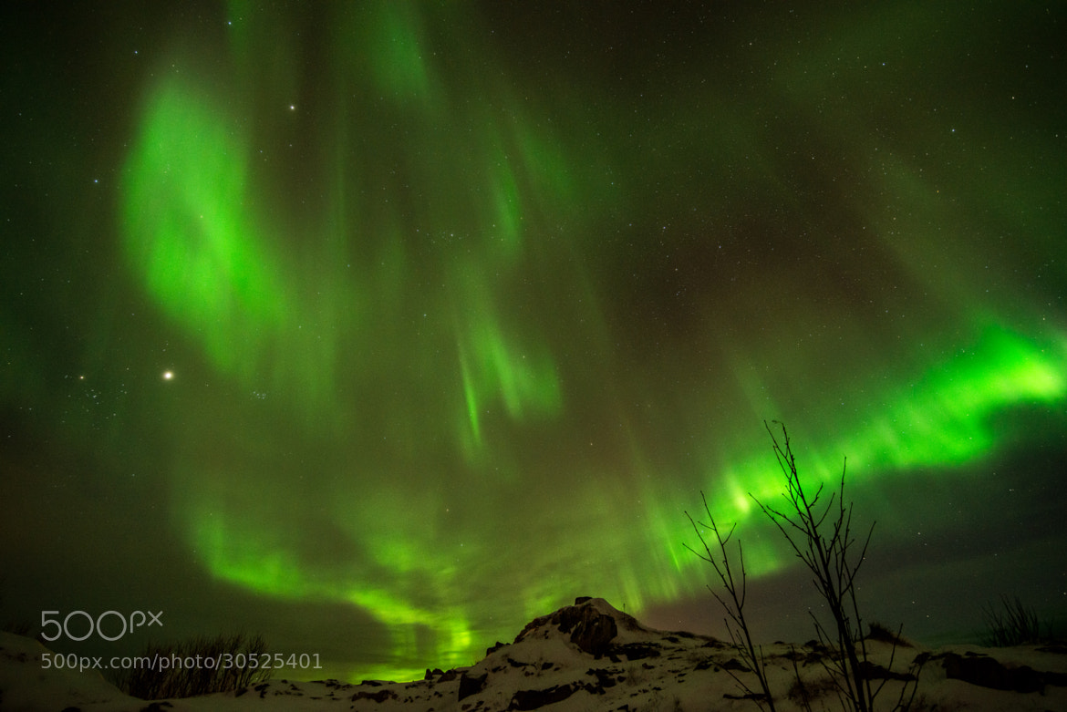 Photograph Aurora Borealis by Marc B on 500px