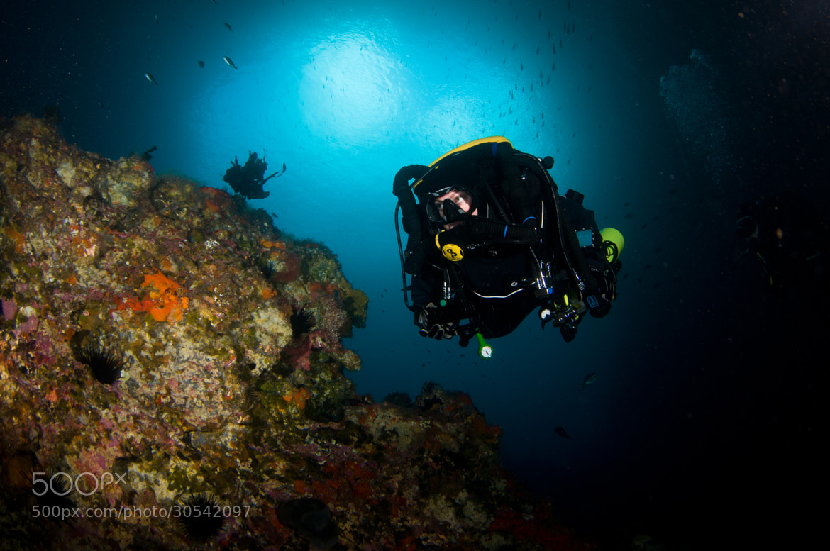 Photograph Rebreather Diver by Tara Sutherland on 500px