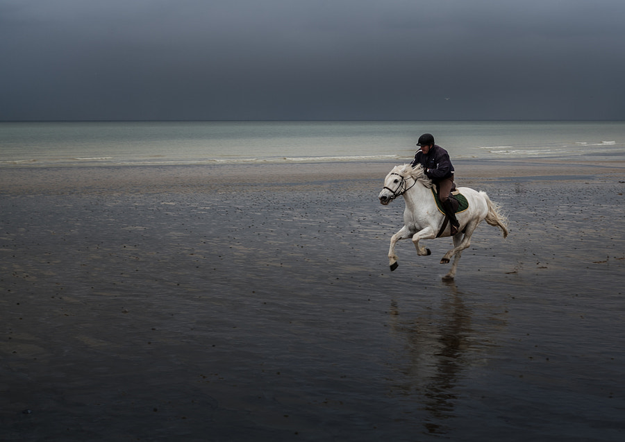Galop sur la plage by Marc Romang on 500px.com