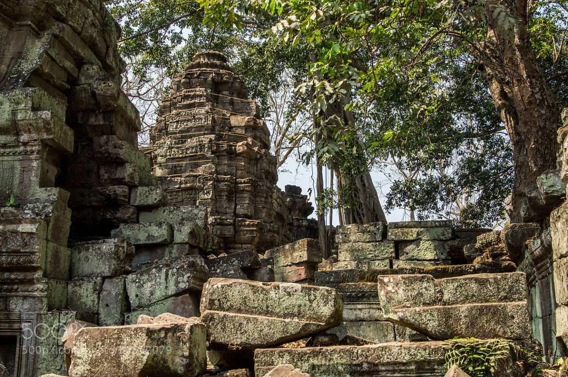 Photograph Ta prohm by Boris Syrovatkin on 500px