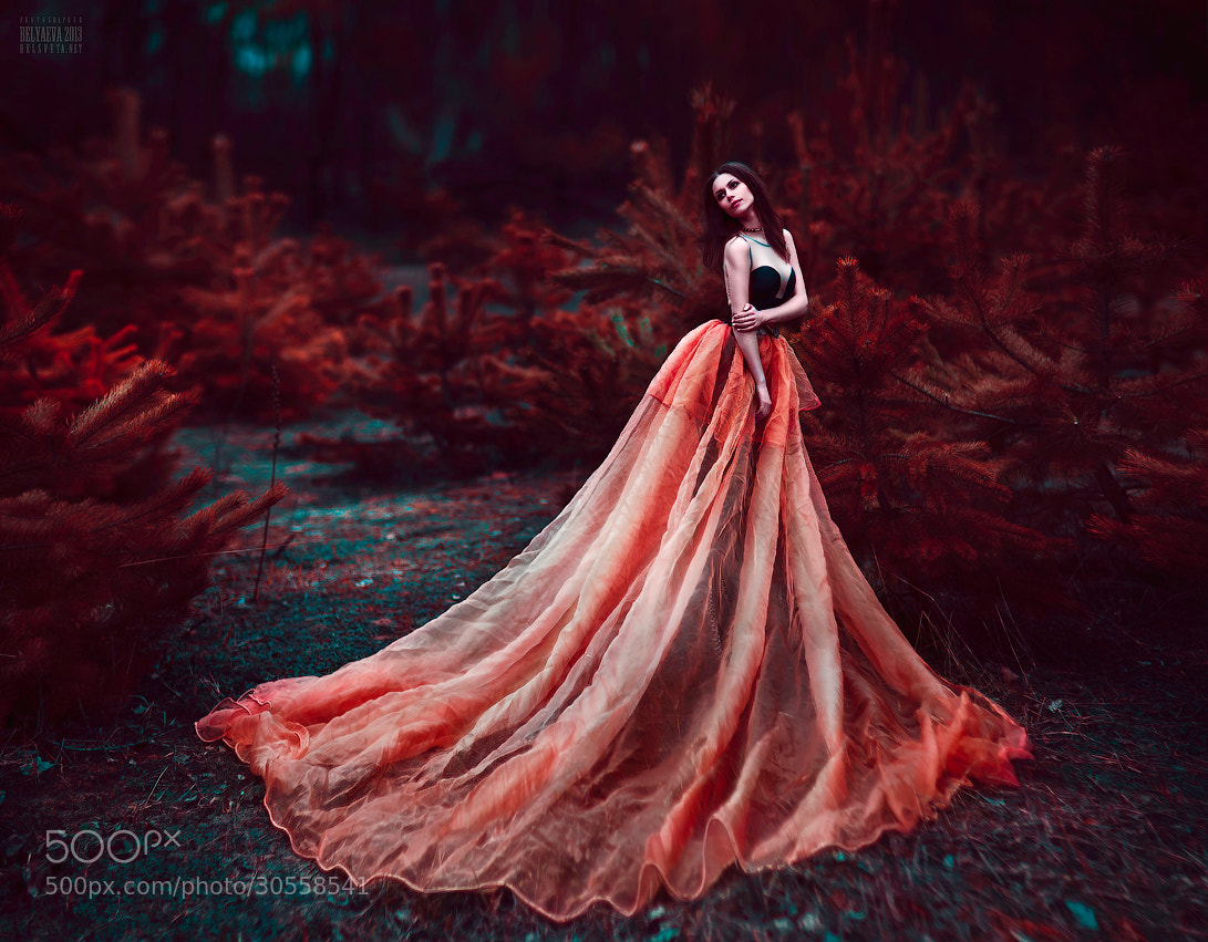 Photograph Untitled by Светлана  Беляева on 500px
