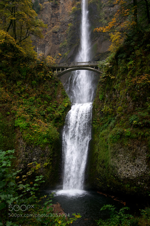 Multanomah Falls on the Oregon side of the Columbia River Gorge. I had a great day. I actually got to see salmon spawning, had a wonderful 10 mile hike and the drive through the Gorge is crazy pretty.