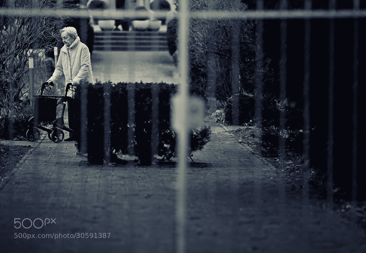 Photograph Untitled by Koray Can on 500px