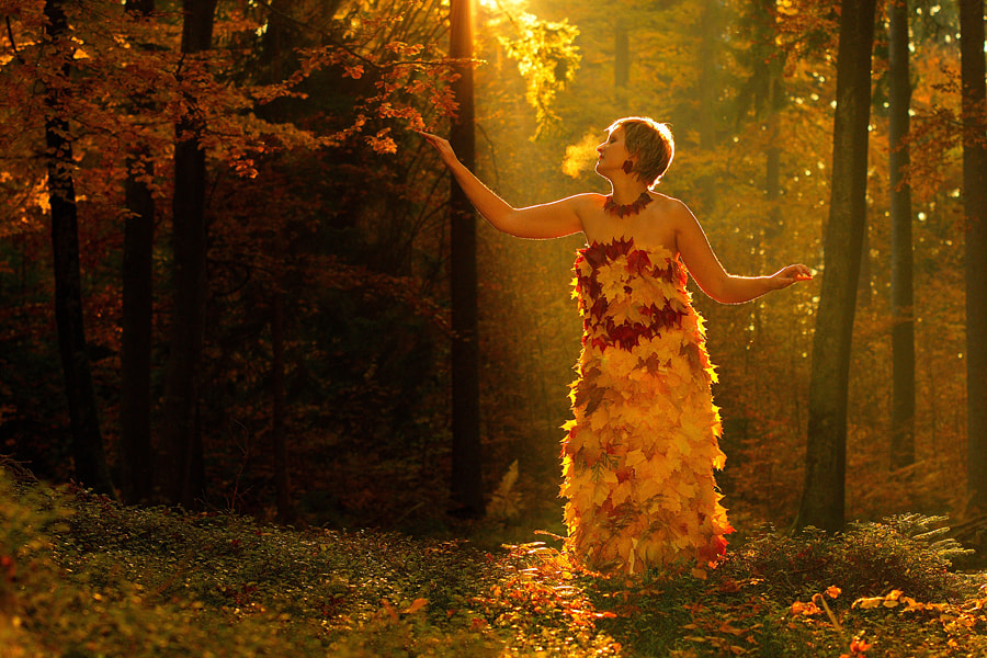 Photograph Forest Fairy II by Janez Tolar on 500px
