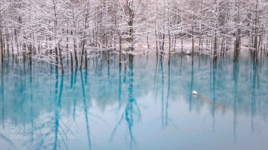 Photograph Blue Pond Of Winter by Kent Shiraishi on 500px