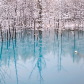 Blue Pond Of Winter by Kent Shiraishi (KentShiraishi)) on 500px.com