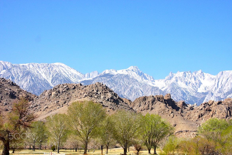 Photograph Eastern Sierra Mountains by Rachel Haas on 500px